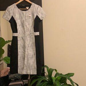 J crew Factory short sleeve pencil dress
